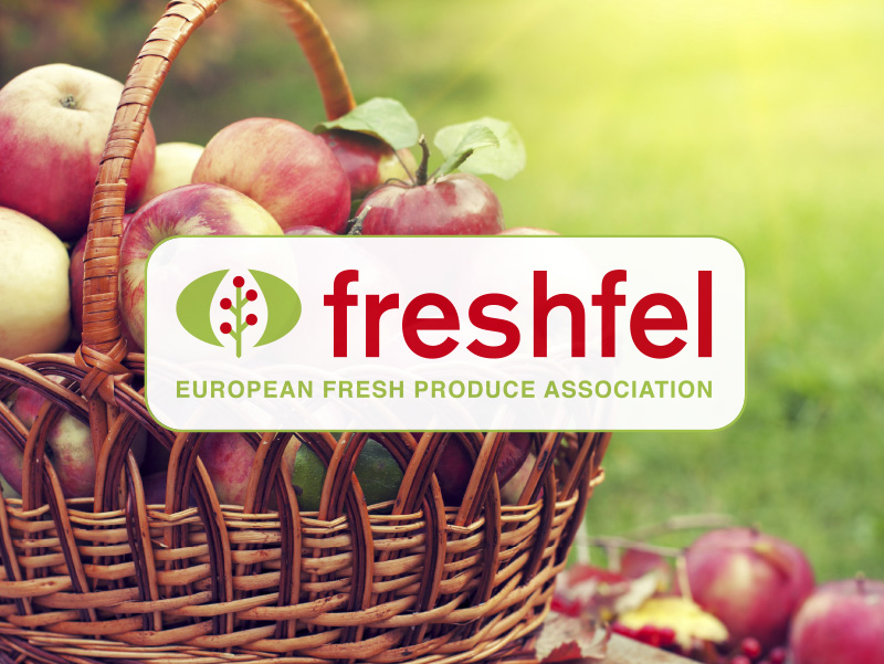 img_freshfel