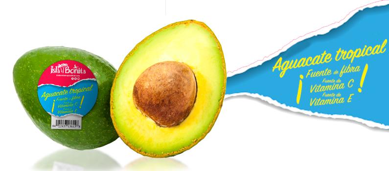 Aguacate-tropical-Isla-Bonita-gama-Classic-